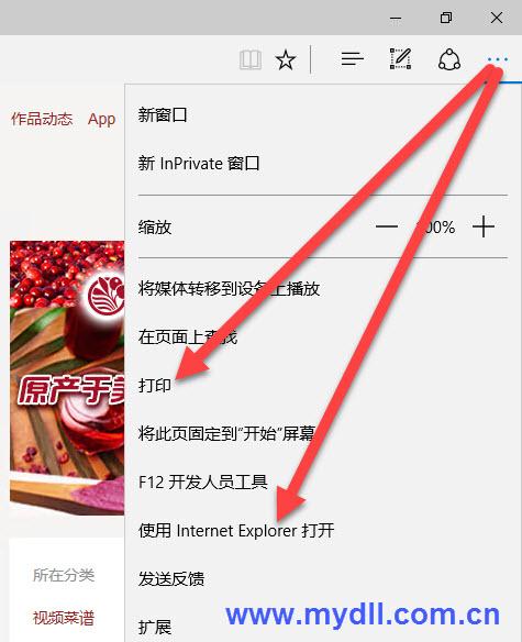 使用Internet Explorer打开网页