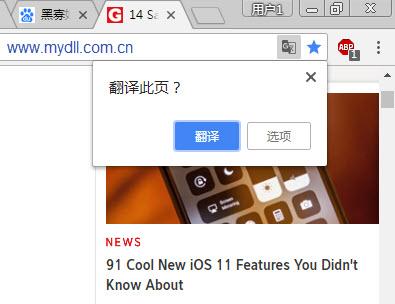 谷歌Chrome翻译提示
