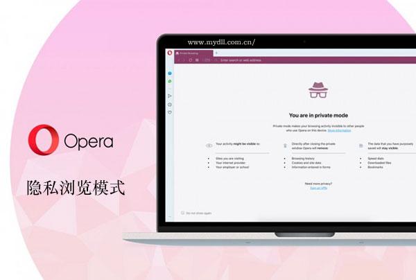 Opera浏览器隐私浏览模式