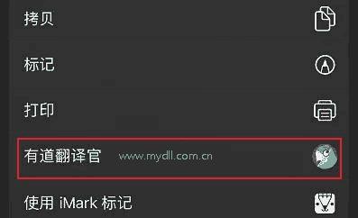 有道翻译官插件